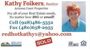 Kathy Folkers - Agent